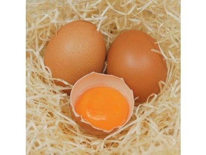 Farmářská vejce