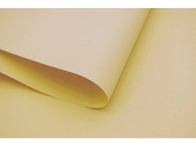 roleta na okno Maxi D02