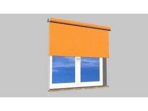 roleta na okno Maxi D06