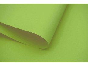 roleta na okno Maxi D11