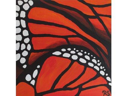 Roni Syvin Motýlí křídla