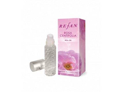 rosa centifolia roll