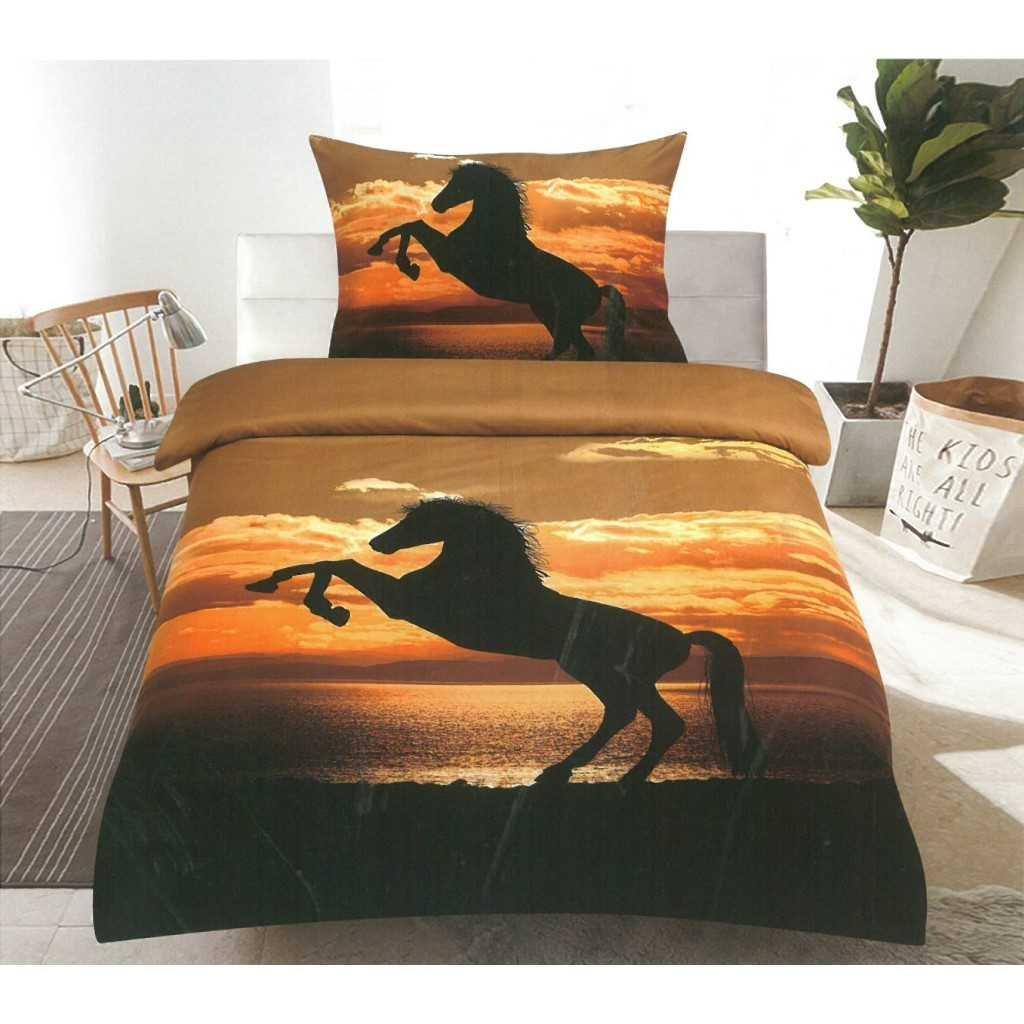 Kůň se západem slunce