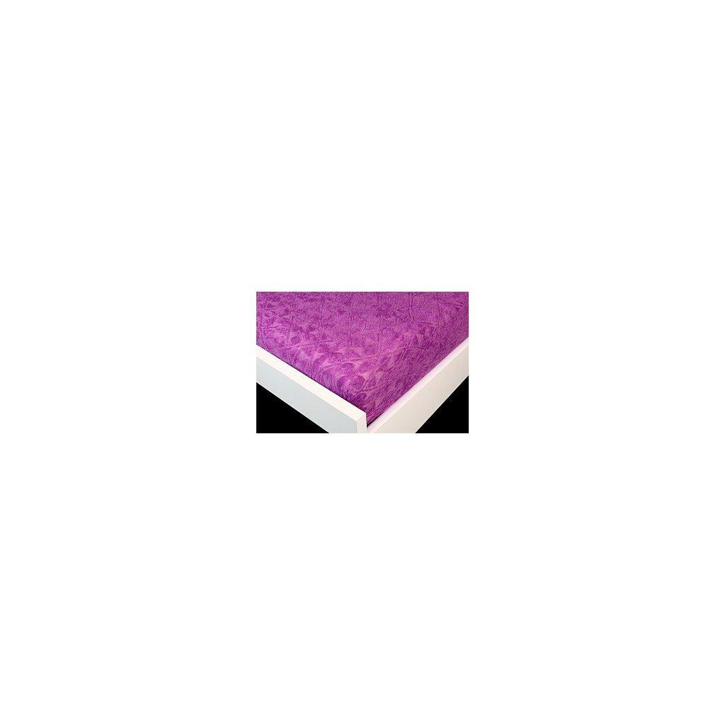 zakar fialova