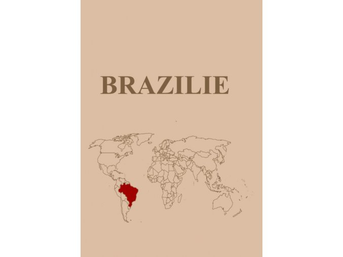 brazilie 570x806