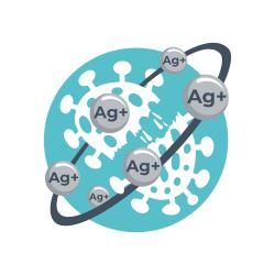 ag+ icon