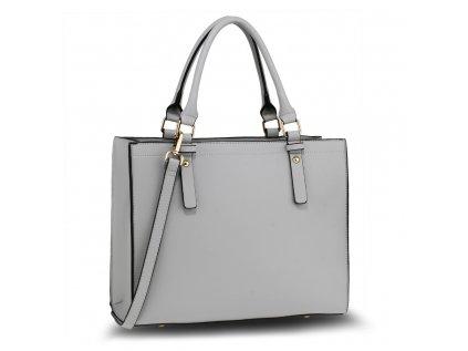 AG00646 Grey 1