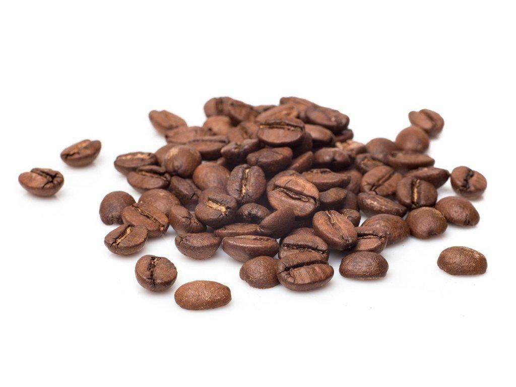 brazilie santos ny2 ssfc 17 18 zrnkova kava