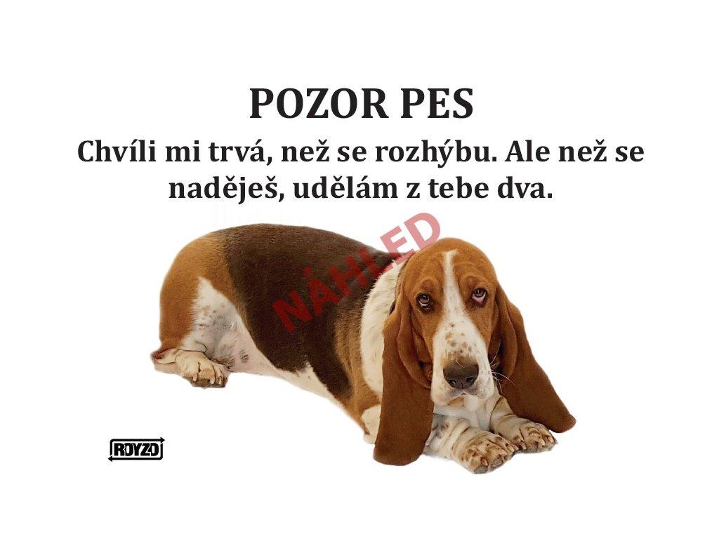 Výstražná vtipná samolepící cedule pozor pes - psí plemeno Basset