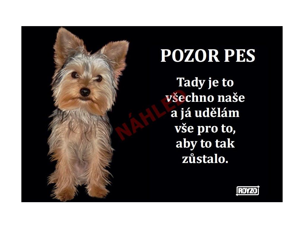 Výstražná vtipná cedule pozor pes - psí plemeno Yorkshire terrier krátkosrstý