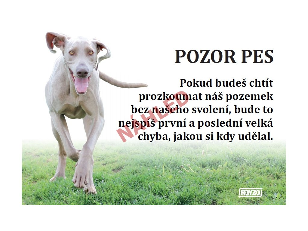 Výstražná vtipná samolepící cedule pozor pes - psí plemeno Výmarský ohař 2