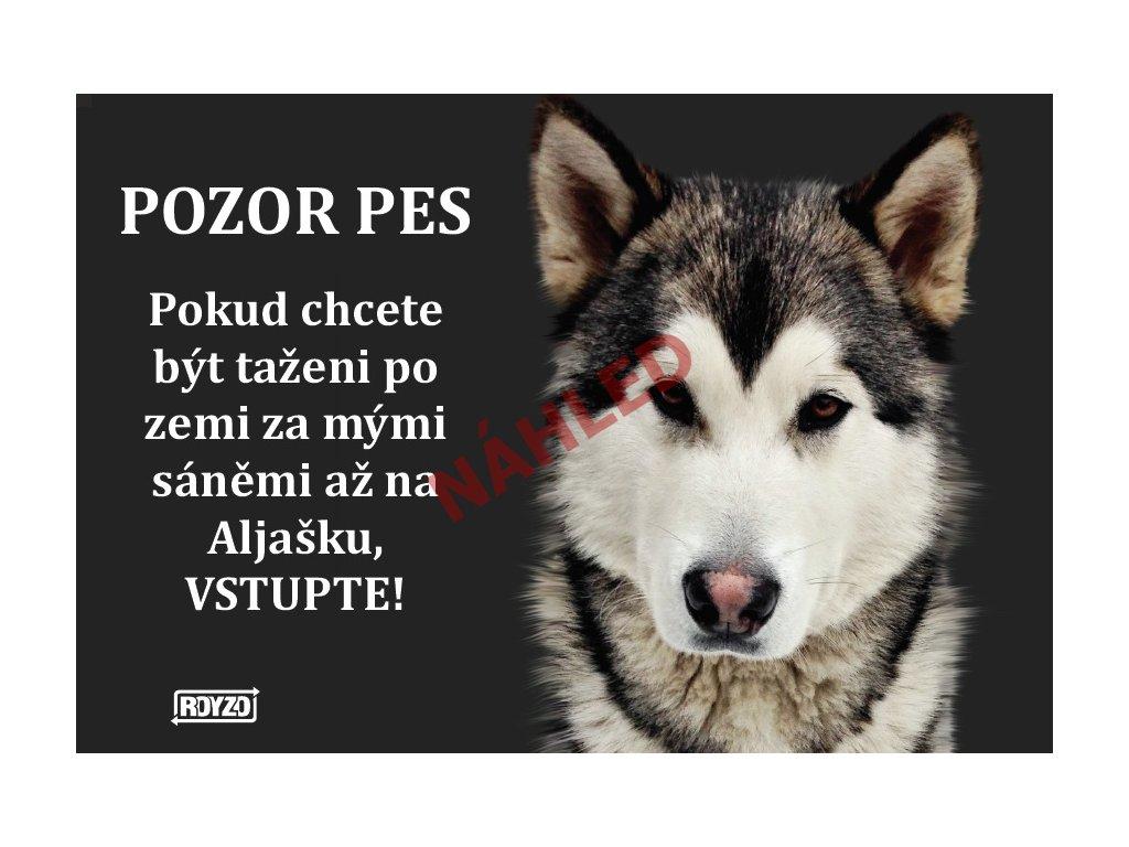 Výstražná vtipná cedule pozor pes - psí plemeno Aljašský malamut