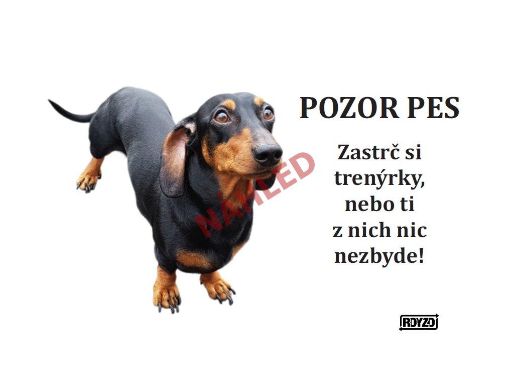 Výstražná vtipná samolepící cedule pozor pes - psí plemeno Jezevčík hladkosrstý černý