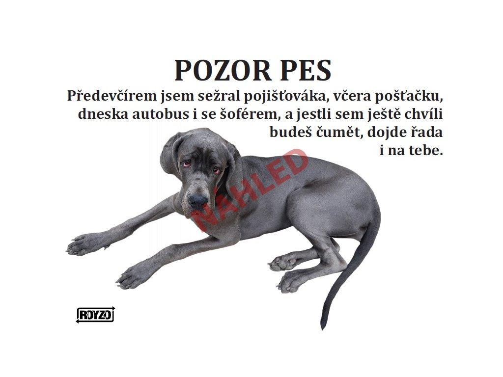 Výstražná vtipná cedule pozor pes - psí plemeno Německá doga modrá