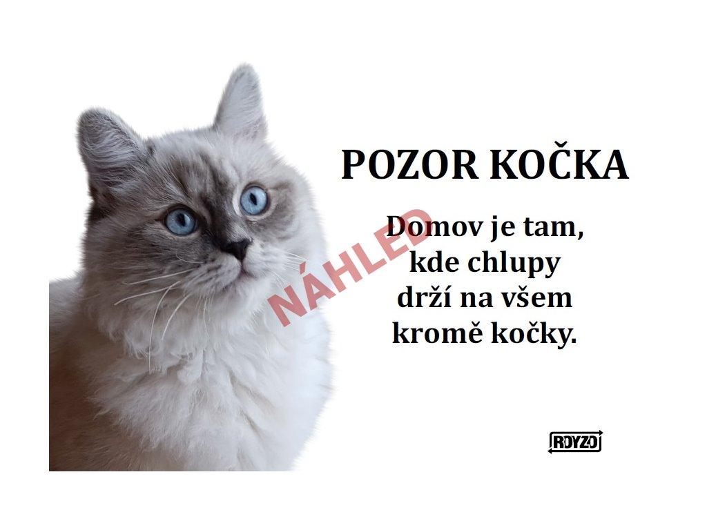 Výstražná vtipná cedule pozor kočka - Ragdoll Blue