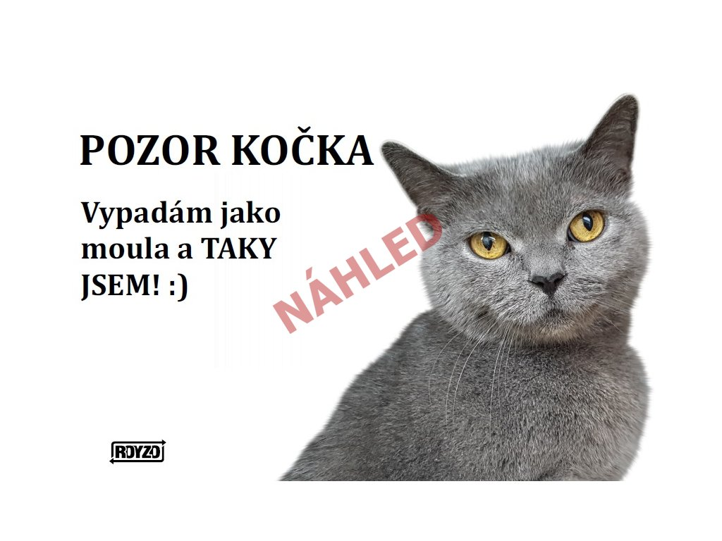 Výstražná vtipná cedule pozor kočka Britská kočka