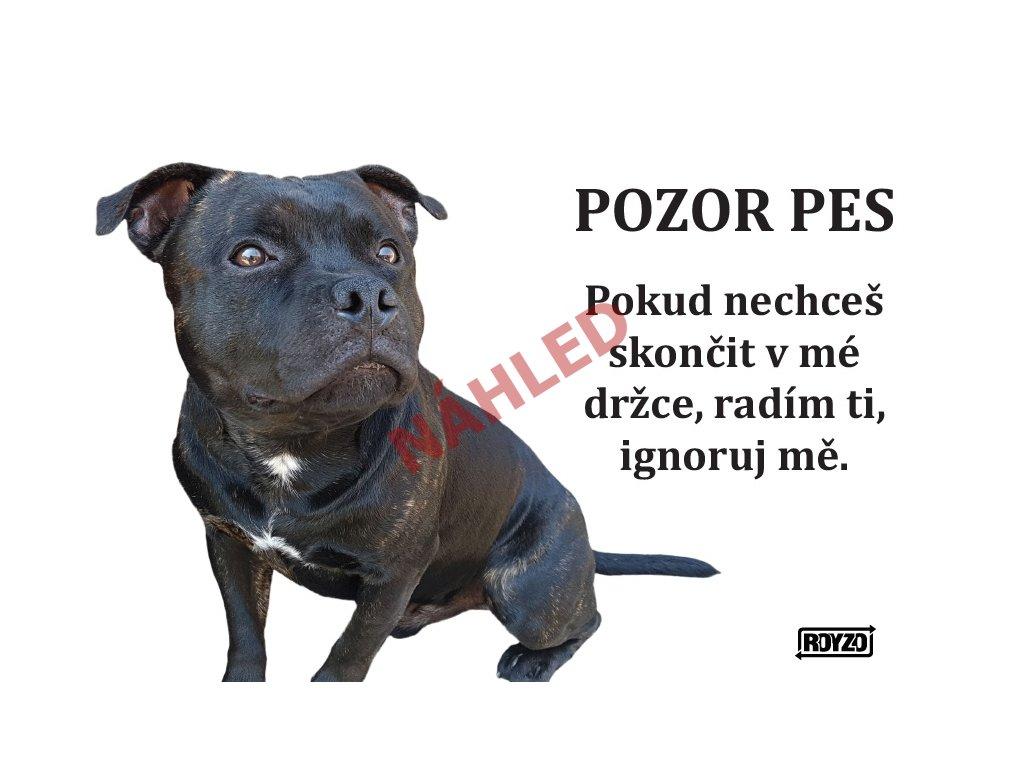 Výstražná vtipná cedule pozor pes - psí plemeno Stafordširský bulteriér