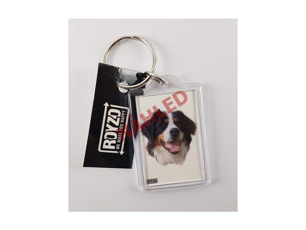 Klíčenka - Bernský salašnický pes