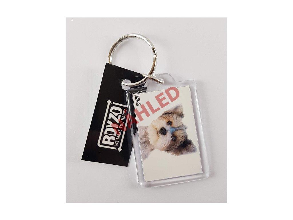 Klíčenka - Biewer Yorkshire terrier