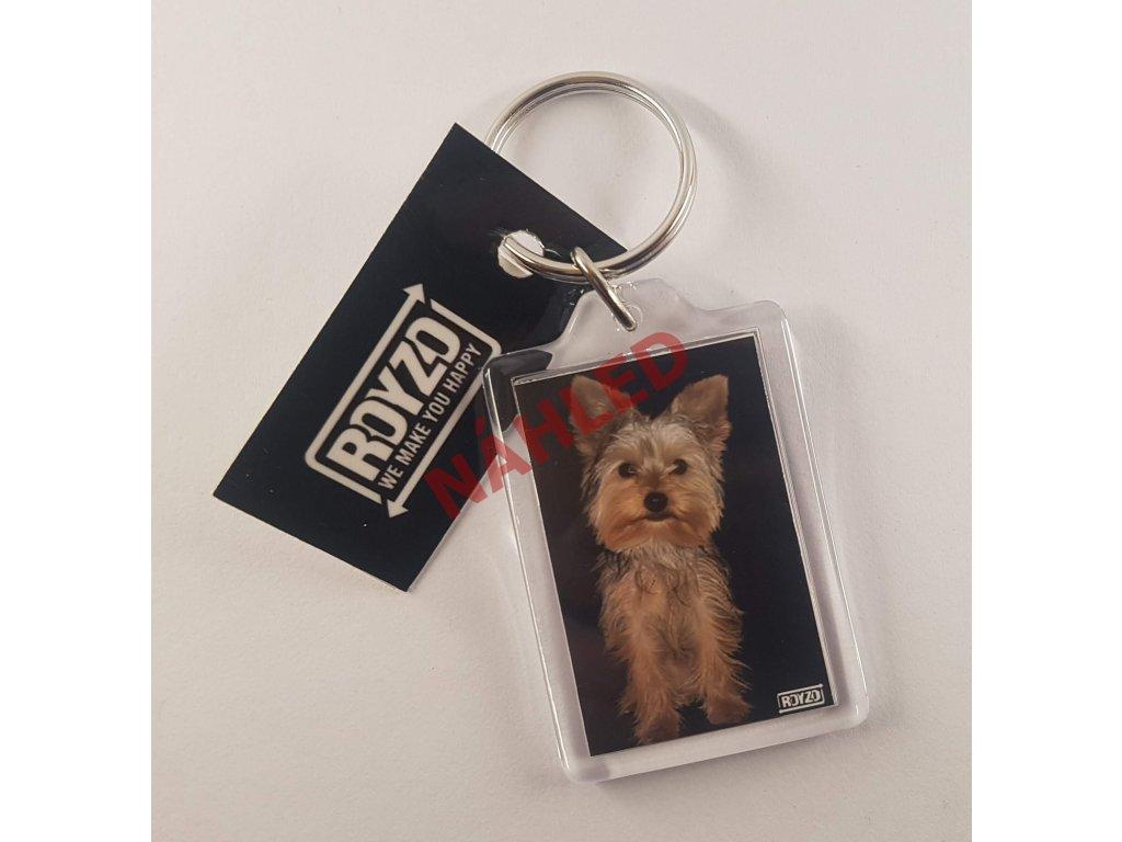 Klíčenka - Yorkshire terrier krátkosrstý