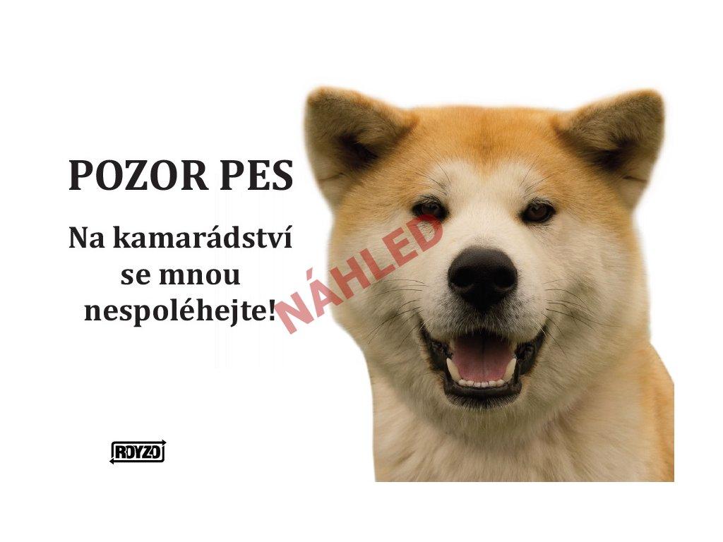 Výstražná vtipná samolepící cedule pozor pes - psí plemeno Akita Inu