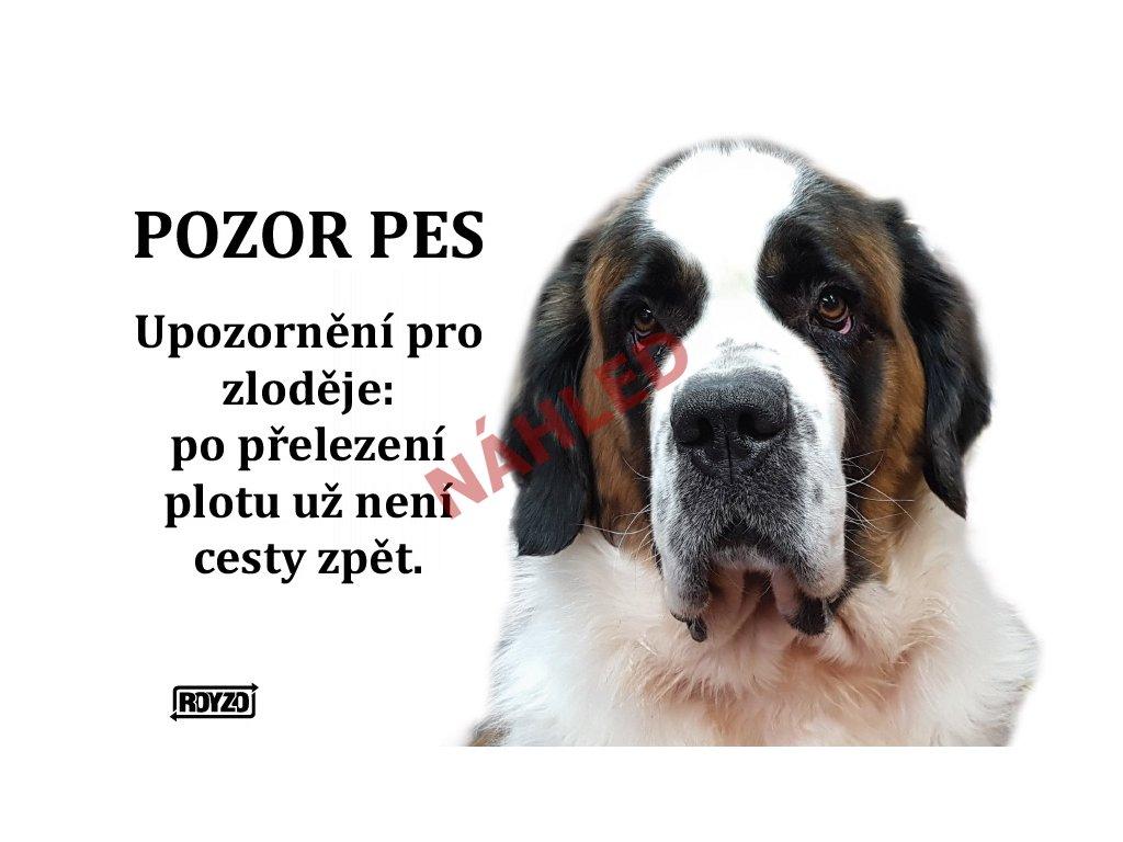 Výstražná vtipná samolepící cedule pozor pes - psí plemeno Bernardýn