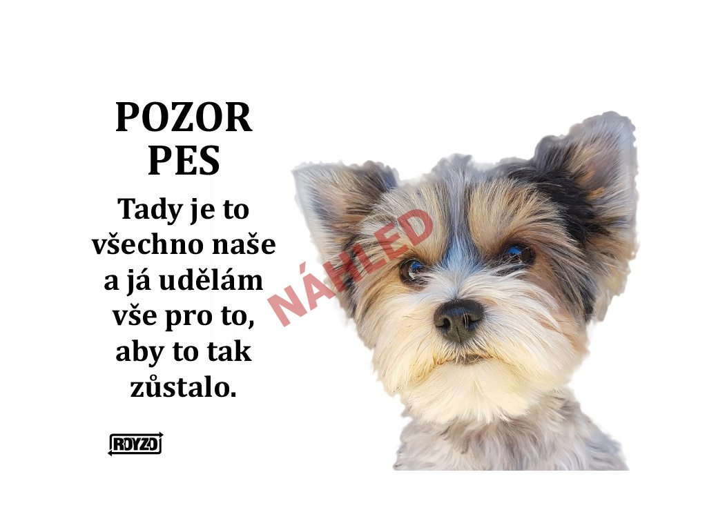 Výstražná vtipná samolepící cedule pozor pes - psí plemeno Biewer Yorkshire terrier