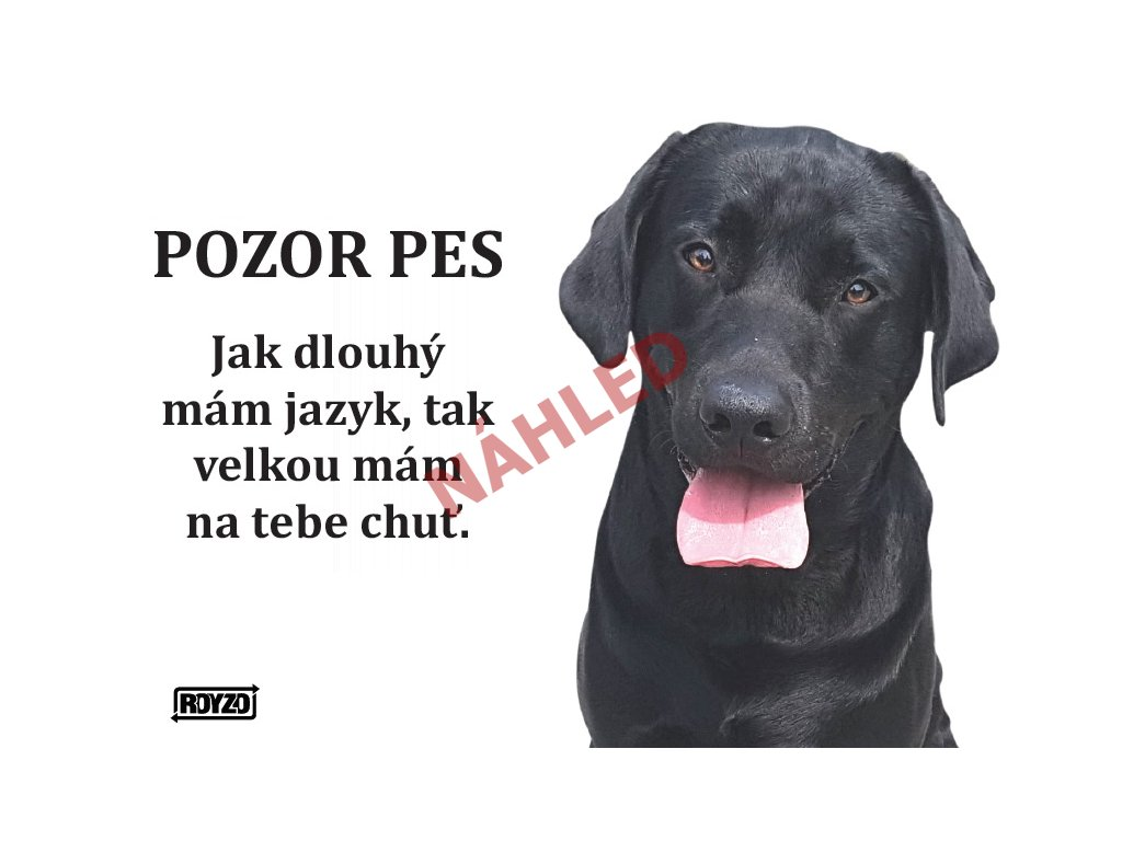 Výstražná vtipná samolepící cedule pozor pes - psí plemeno Labradorský retrívr černý