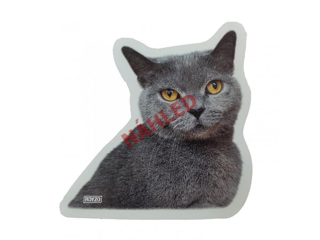 Samolepka Britská kočka