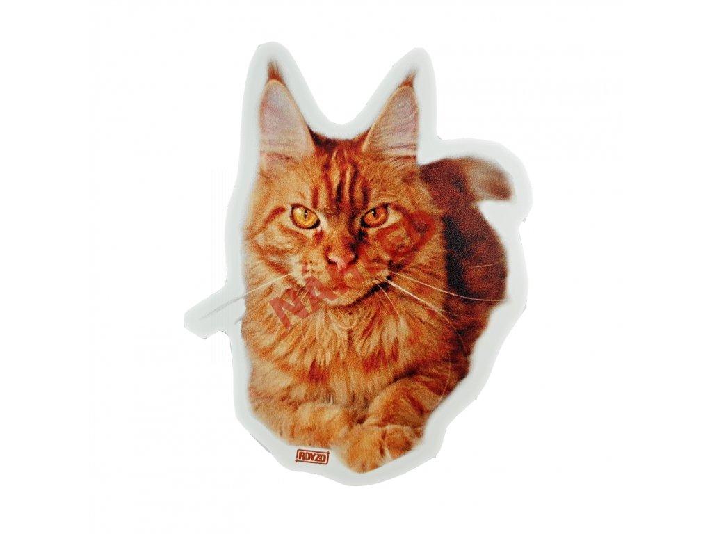 Samolepka Mainská mývalí kočka červená