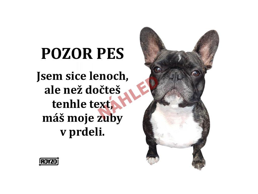 Výstražná vtipná cedule pozor pes - psí plemeno Francouzský buldoček žíhaný