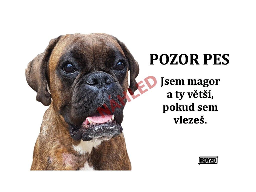 Výstražná vtipná cedule pozor pes - psí plemeno Německý boxer žíhaný