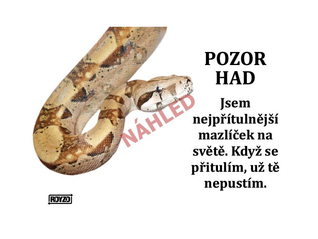 A Hroznys kralovsky 2020