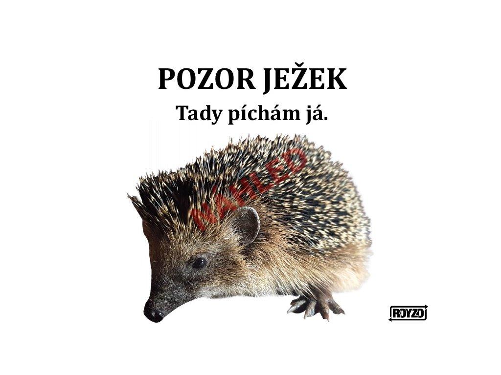 A Jezek 2020