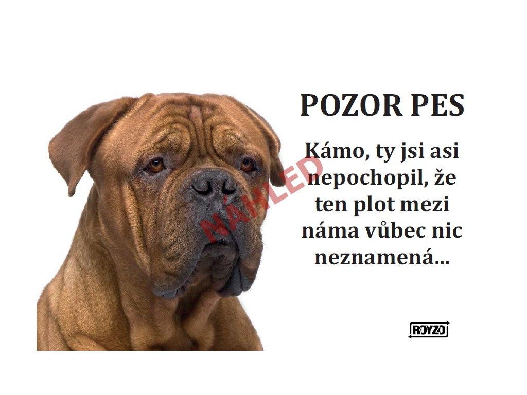Výstražná vtipná samolepící cedule pozor pes - psí plemeno Bordeauxská doga