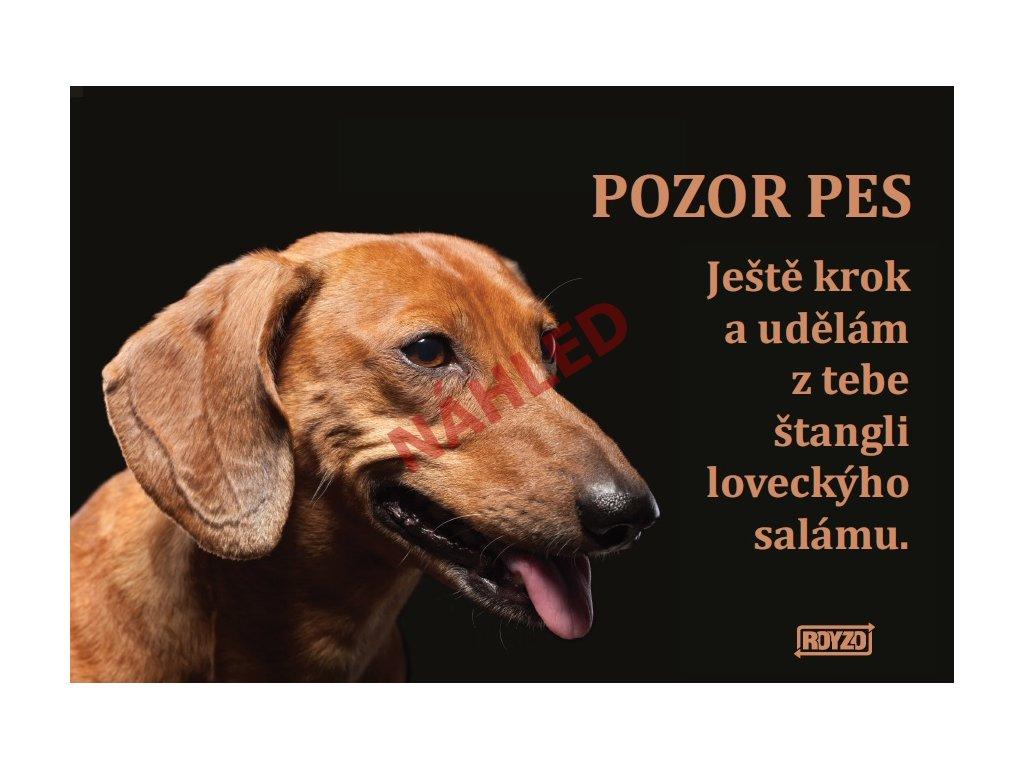 Výstražná vtipná samolepící cedule pozor pes - psí plemeno Jezevčík hladkosrstý hnědý