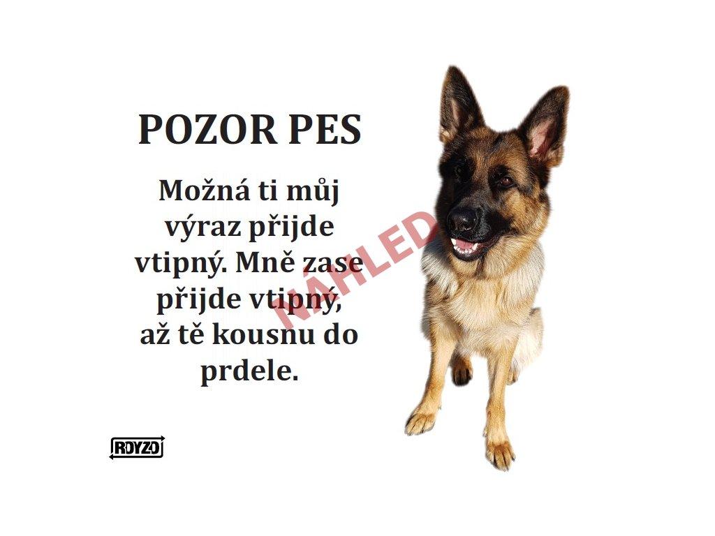 Výstražná vtipná cedule pozor pes - psí plemeno Německý ovčák sedící