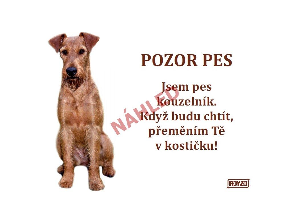Výstražná vtipná samolepící cedule pozor pes - psí plemeno Irský teriér