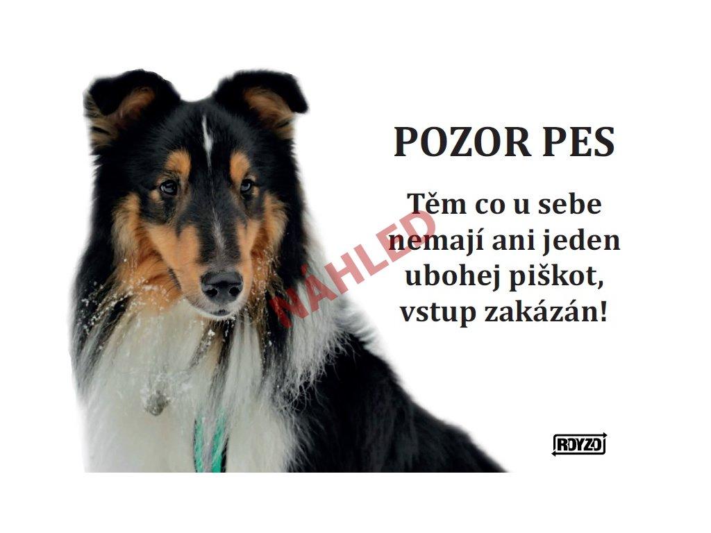 Výstražná vtipná samolepící cedule pozor pes - psí plemeno Sheltie