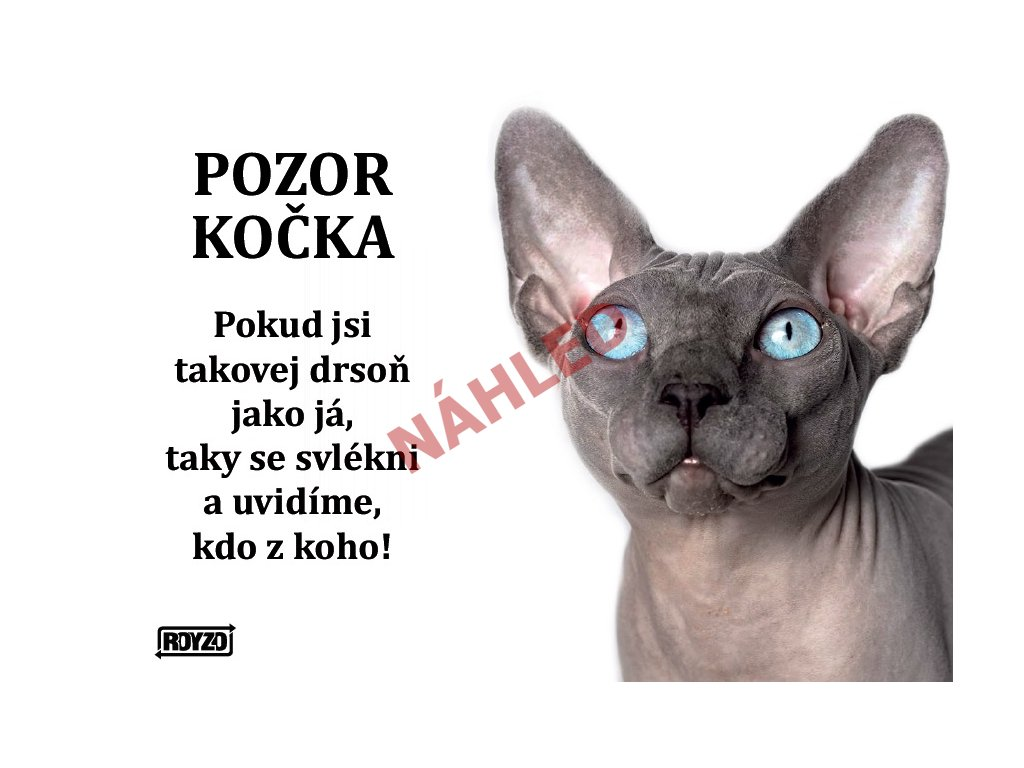 Výstražná vtipná cedule pozor kočka - Sphynx
