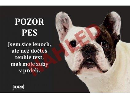 Výstražná vtipná cedule pozor pes - psí plemeno Francouzský buldoček bílý