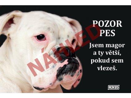 Výstražná vtipná cedule pozor pes - psí plemeno Německý boxer bílý