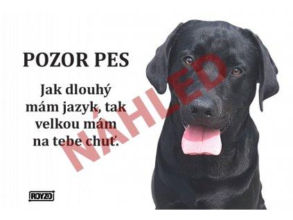 Výstražná vtipná cedule pozor pes - psí plemeno Labradorský retrívr černý
