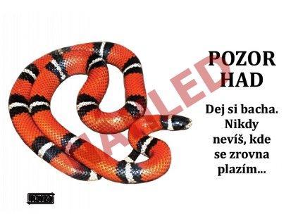 Výstražná vtipná samolepící cedule pozor had - Korálovka sedlatá