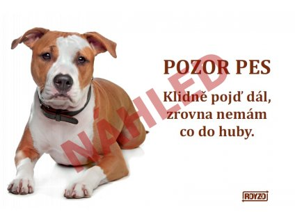 Výstražná vtipná cedule pozor pes - psí plemeno Staford