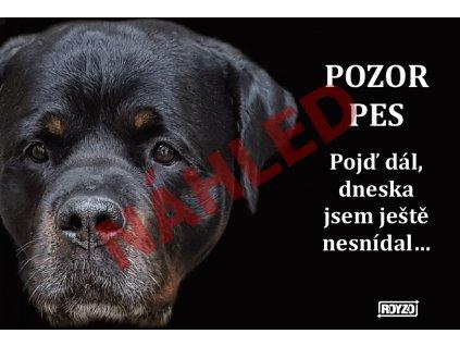 Výstražná vtipná cedule pozor pes - psí plemeno Rotvajler