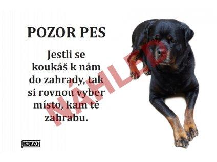 Výstražná vtipná samolepící cedule pozor pes - psí plemeno Rotvajler ležící