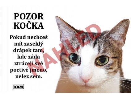 Výstražná vtipná cedule pozor kočka - Kočka domácí