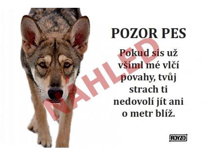 Výstražná vtipná cedule pozor pes - psí plemeno Saarloosův vlčák