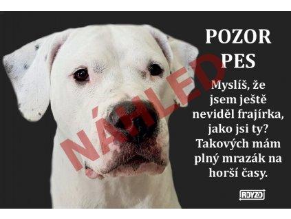 Výstražná vtipná samolepící cedule pozor pes - psí plemeno Argentinská doga